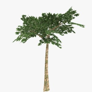 3ds realistic platanus tree type