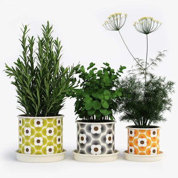 orla kiely pot plant 3d obj