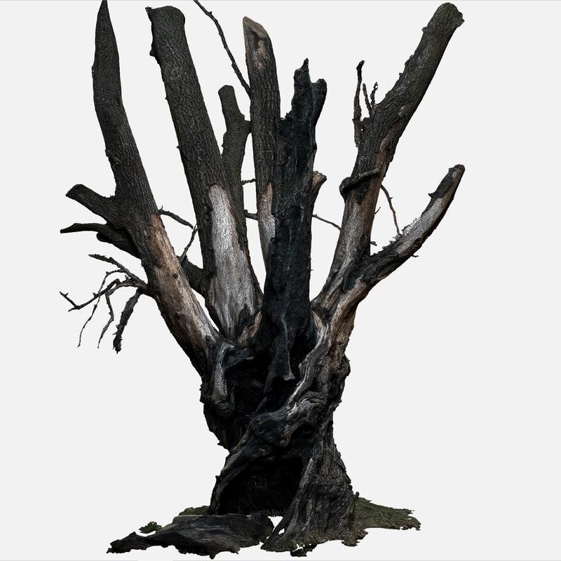 tree charred trunk willow 3d obj