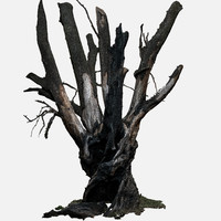3d tree charred trunk willow