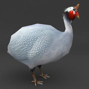 guinea fowl bird 3d max