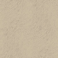 wall stucco texture