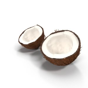 sliced coconut 3d model