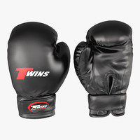 Boxing Gloves Twins Black 3D Model
