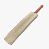 cricket bat modeled 3ds