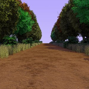 country forest path c4d