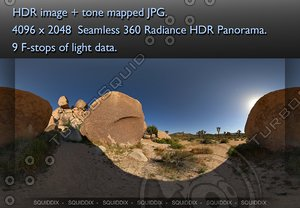 JOSHUA TREE ROCK FORMATIONS AND TREES , 360 PANORAMA #079