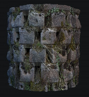 brick moss wall