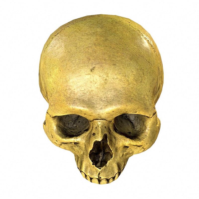 maya skull s poor
