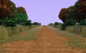 country forest path 3d c4d