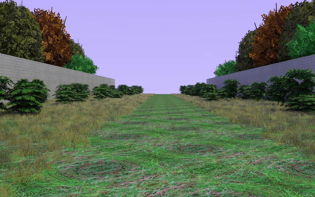3d country path