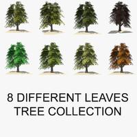 renderer trees 3d c4d