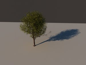 arbol tree 3d model