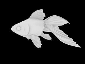 3d goldfish gold fish model