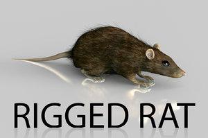 c4d rigged rat