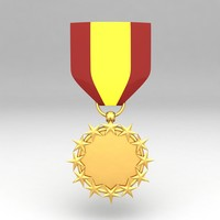 Medal Awards 132