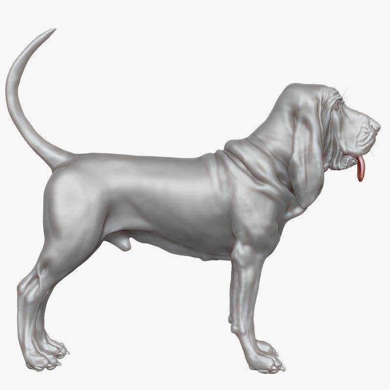obj bloodhound uved