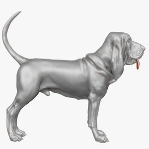 bloodhound zbrush 3d model