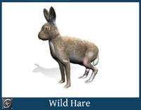 wild hare obj