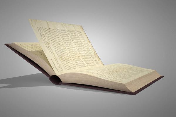 rig book 3d model