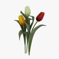 tulips flower 3d model