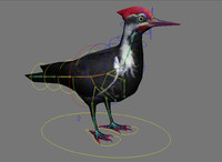Woodpecker rigged  black low poly
