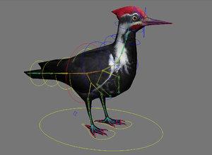 woodpecker black rig max