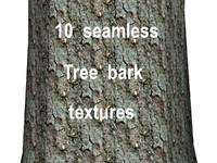 Tree Bark Collection 14