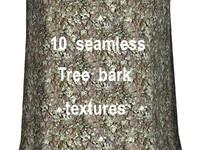 Tree Bark Collection 15