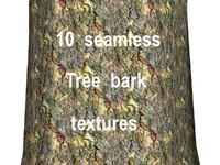 Tree Bark Collection 13