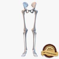 3d leg skeleton model