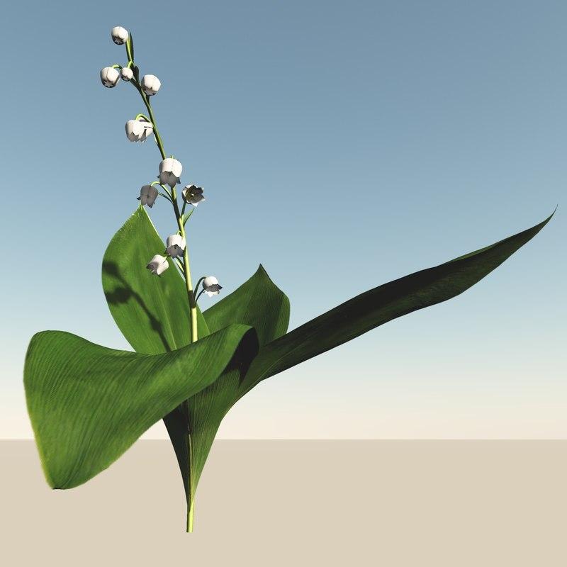 valley flowering 3d 3ds