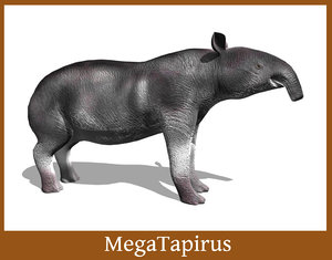 3d prehistoric tapir megatapirus