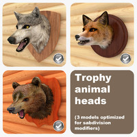 Trophy Animal Heads