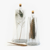 Decorative Bottles with Feathers