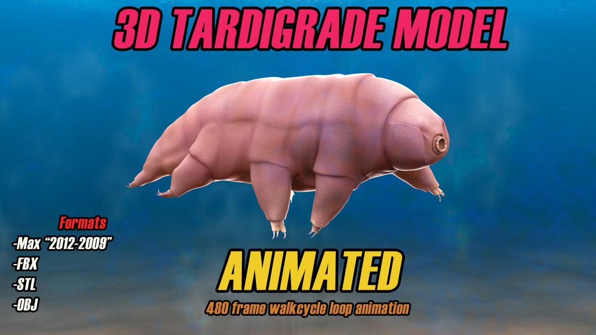 3d tardigrade animation water bear