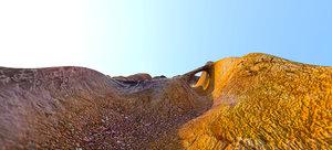 desert labirinth level 3d model