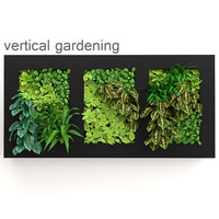 Vertical gardening one
