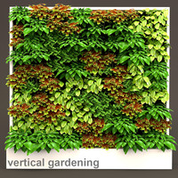 Vertical gardening 3