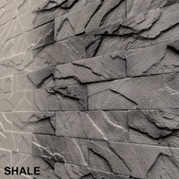 The shale