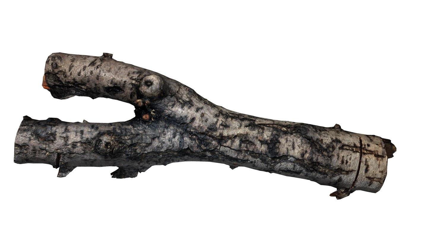 3d branch rotten wood