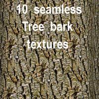 Tree Bark Collection 16