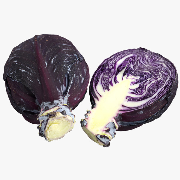3d model red cabbage half