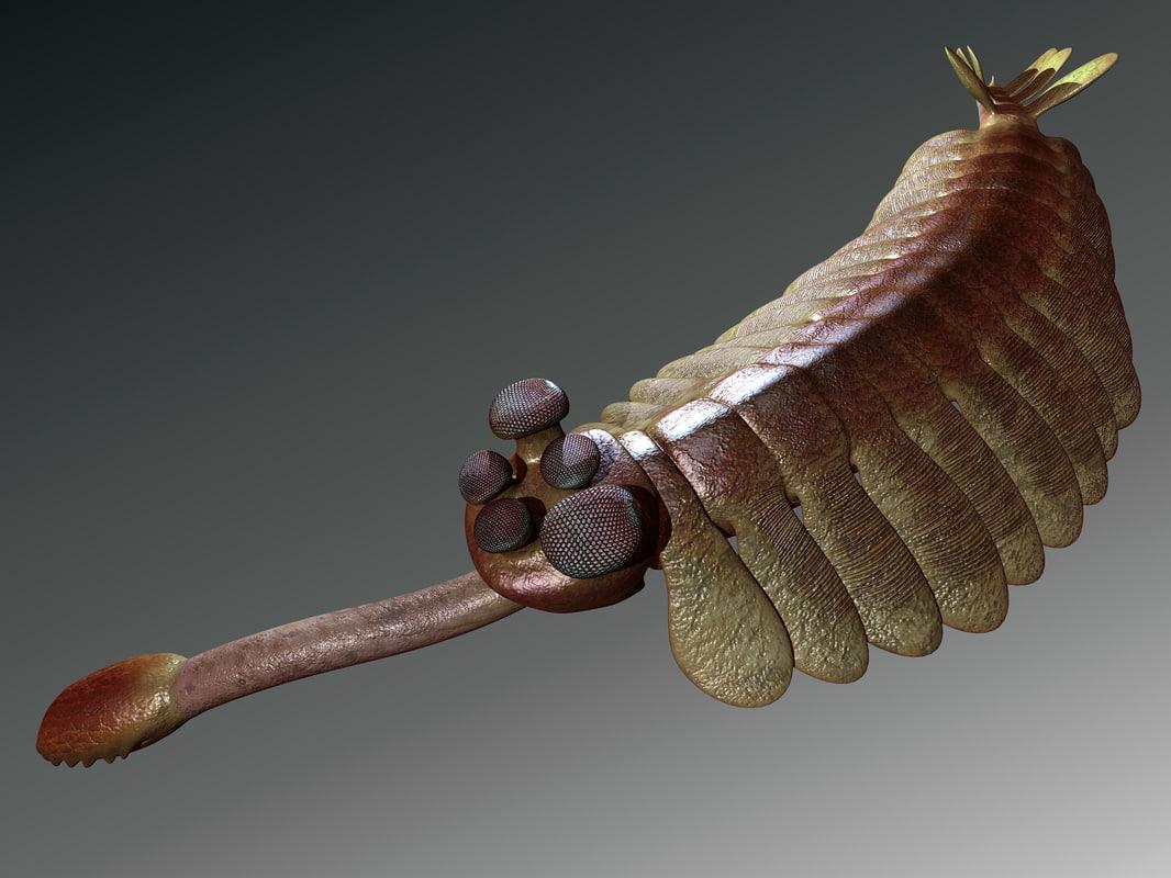 opabinia sealife prehistoric 3d model