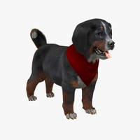 cute mountain dog puppy 3d model