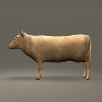cow brown 3d model