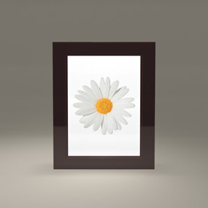 free obj model picture frame