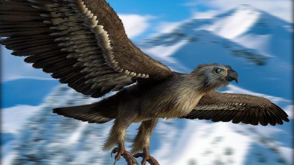 eagle feathers 3d 3ds