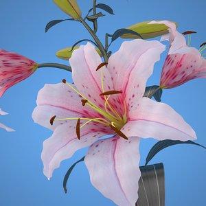 maya lily pink