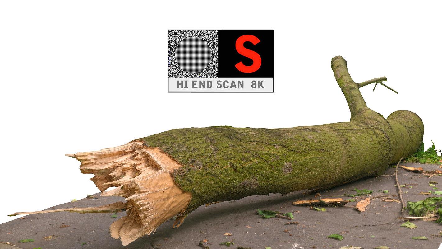 3d model scanned 8k branch broken